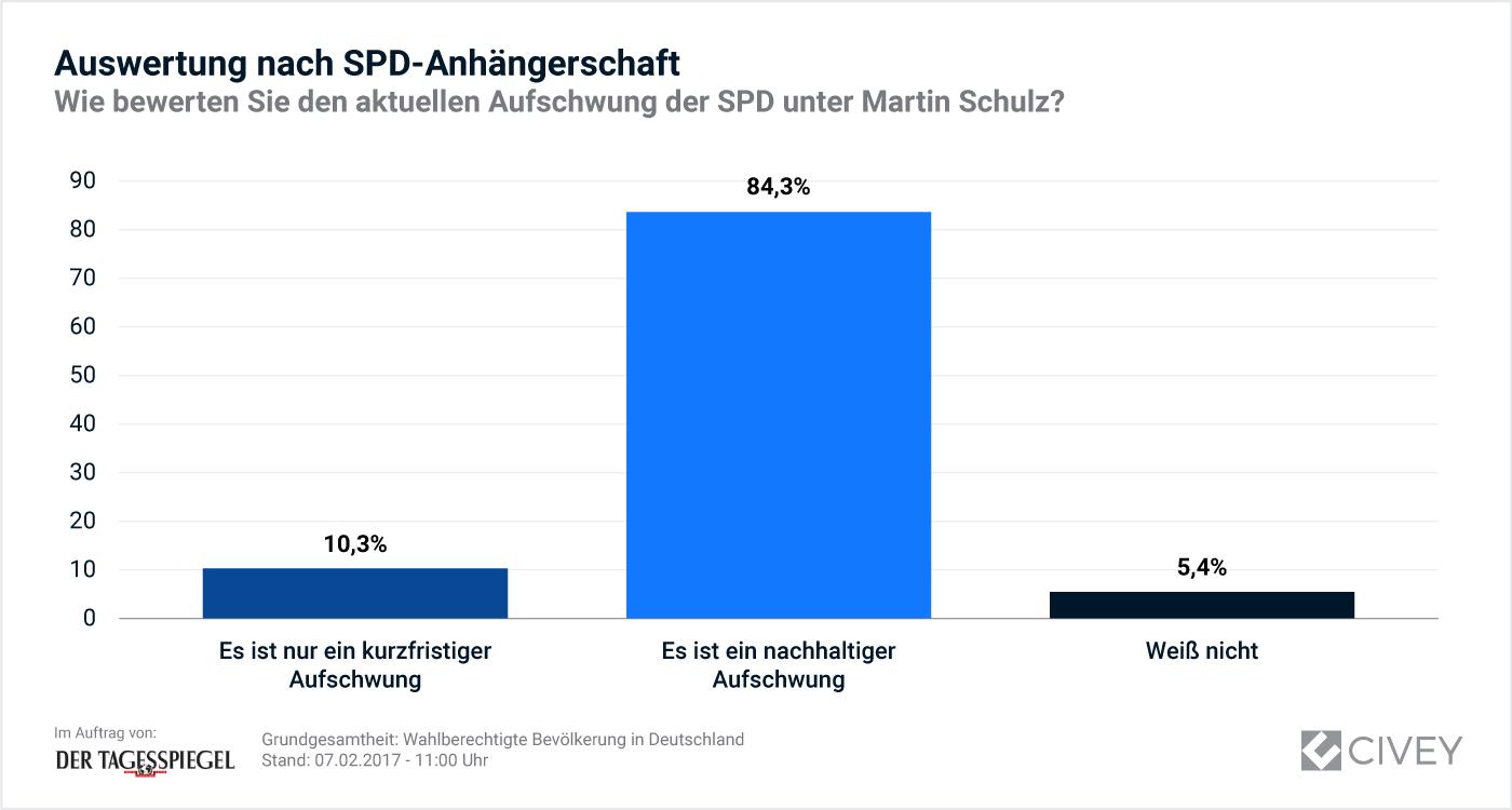 Schaubild - Auswertung nach SPD-Anhängerschaft
